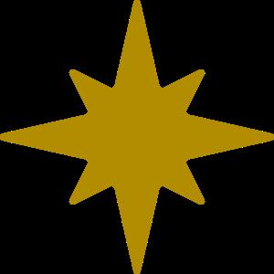 星・キラキラST-1894