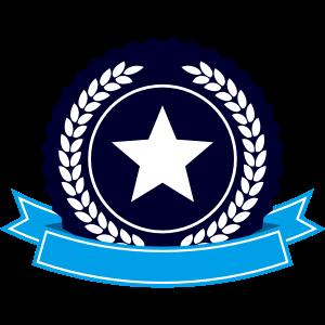 星・キラキラST-1382